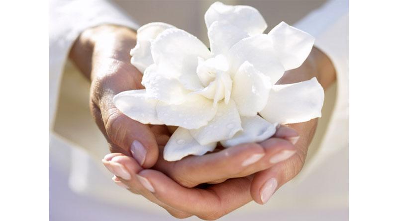 Спецкурс: Работа с травматическим опытом в гештальт-терапии